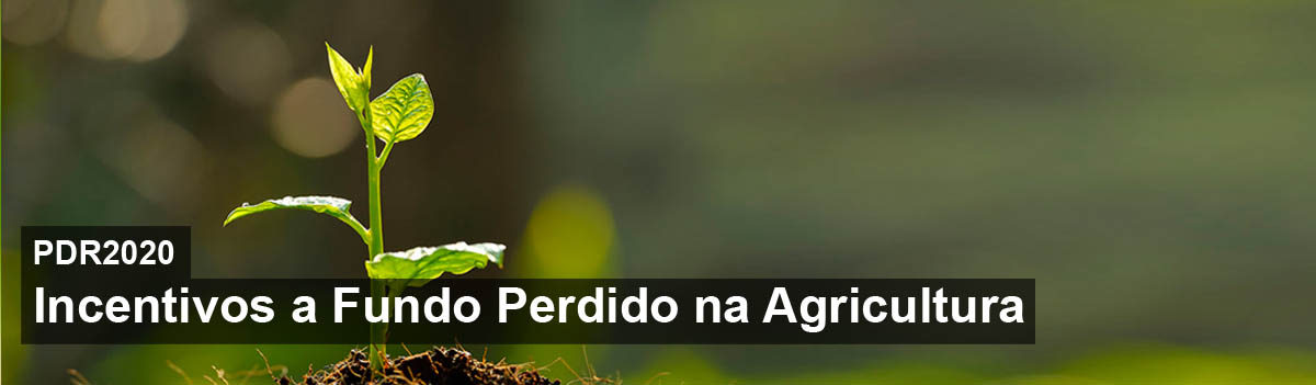 banner_agricultura