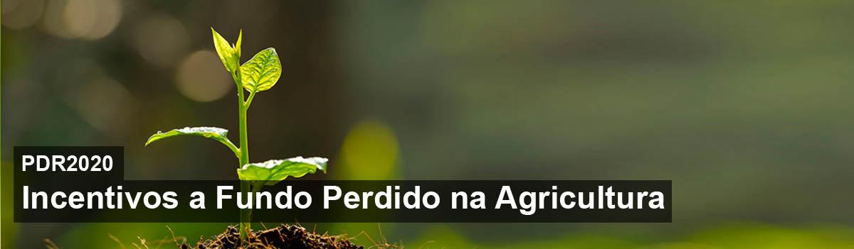 Incentivos a Fundo Perdido na Agricultura