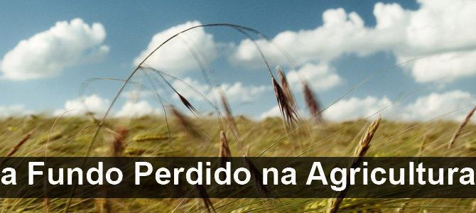 Exploração Agrícola (PROJETOS DE INVESTIMENTO)